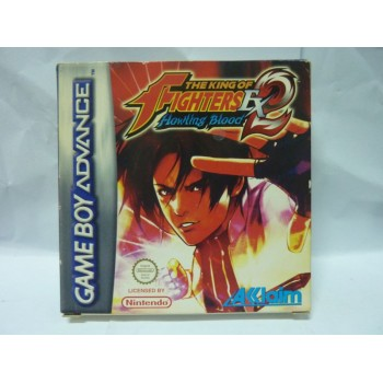 THE KING OF FIGHTERS EX2